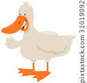 duck farm animal cartoon 31019092