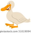 cute duck animal character 31019094