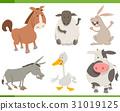 農場動物 卡通 收藏 31019125