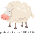 sheep animal character cartoon 31019134