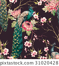 Watercolor peacock vector pattern 31020428