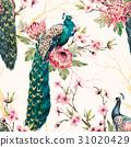 Watercolor peacock vector pattern 31020429