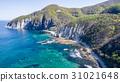 มหาสมุทร,ชายฝั่งทะเล,หน้าผา 31021648