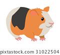 Guinea Pig Cartoon Icon in Flat Design 31022504