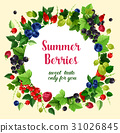 Summer berries and fruits vector poster 31026845