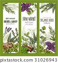 Herb and spice, natural food sketch banner set 31026943