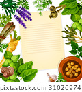 Recipe paper with herb, spice and leaf vegetable 31026974