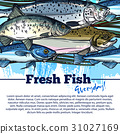 Vector fishing poster with fish catch 31027169