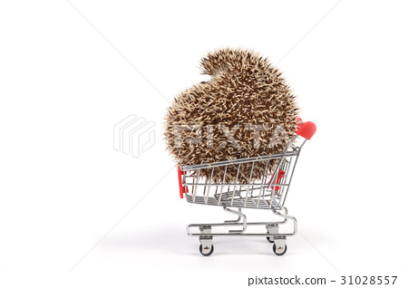 Hedgehog in shopping cart. 31028557