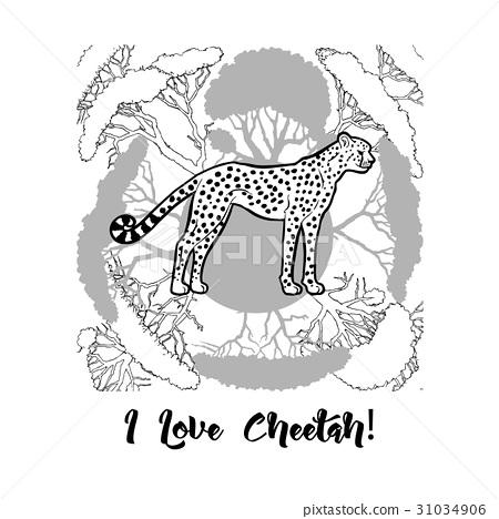 Cheetah print 31034906