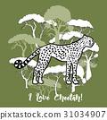 tree savanna Cheetah 31034907
