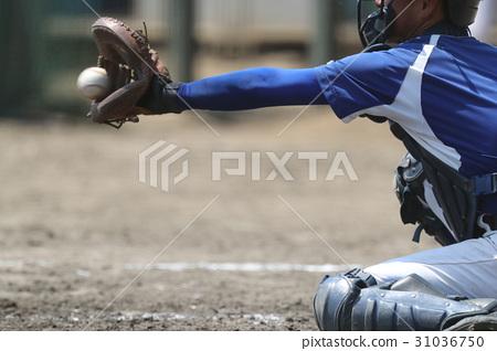catcher 31036750