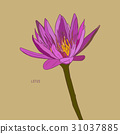 Vector set of hand drawn lotus flowers. 31037885