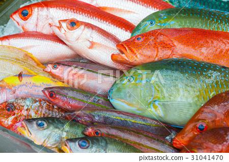 牧士公共市場魚展 31041470