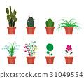 花朵 花 花卉 31049554