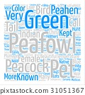 Text Background Word Cloud Concept 31051367