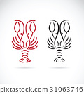 Lobster shrimp design on white background. 31063746
