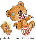 벡터, 갈색, 곰 31066446