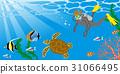 스쿠버 다이빙을 즐기는 남성 바다 거북 31066495