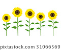 Sunflower illustration 31066569