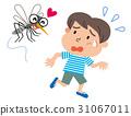 蚊子 條紋蚊子 孩子 31067011