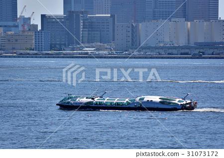 Hamiko, a pleasure boat sailing Tokyo Port 31073172
