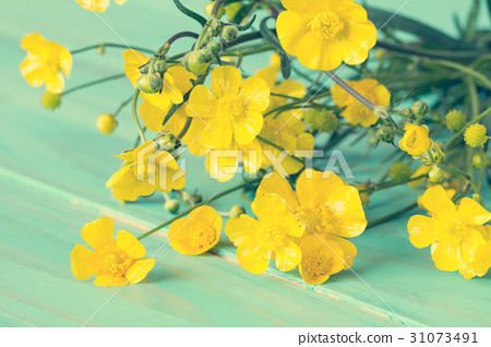Yellow wildflowers on blue wooden background 31073491