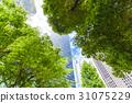 오피스 거리의 고층 빌딩과 녹색 31075229