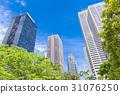 오피스 거리의 고층 빌딩과 녹색 31076250