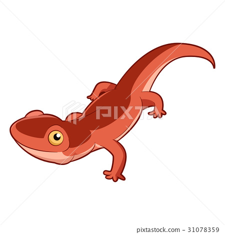 Cartoon smiling Newt 31078359