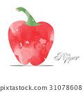 pepper watercolor 31078608