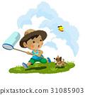 暑假 昆蟲採集 蝴蝶 31085903