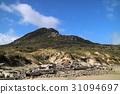 新西蘭斯圖爾特島 31094697