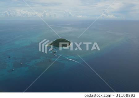케언즈 그레이트 배리어 리프 비행 그린 섬 31108892