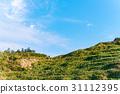 天空,山地,高山,山坡,Sky, mountain, hillside 31112395