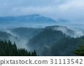 Beautiful mountain range covered with fog and rain 31113542