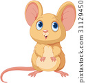 mice mouse animal 31129450