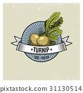 Turnip Vintage set of labels, emblems or logo for 31130514