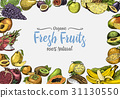 Vintage, hand drawn fresh fruits background 31130550