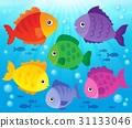 fish, fishes, aquatic 31133046