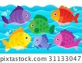 fish, fishes, aquatic 31133047
