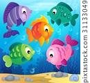 fish, fishes, aquatic 31133049