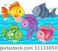 fish, fishes, aquatic 31133050