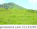 grass field, grassland, grasslands 31133285