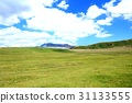 kusasenri, grass field, grassland 31133555