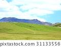 kusasenri, grass field, grassland 31133556