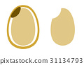 현미, 백미, 흰 쌀 31134793