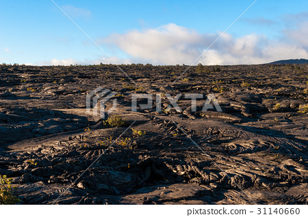 Volcanoes and lava landscapes on the Island of Hawaii 31140660