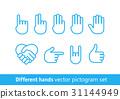 icon, vector, hand 31144949