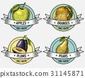 emblem, vector, label 31145871